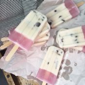 Dairy-Free Maple Chocolate Chip Popsicles