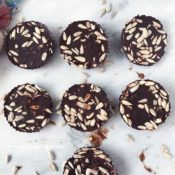 Sunflower Seed Chocolate Coins {Paleo, Vegan, Nut-Free, Dairy-Free}